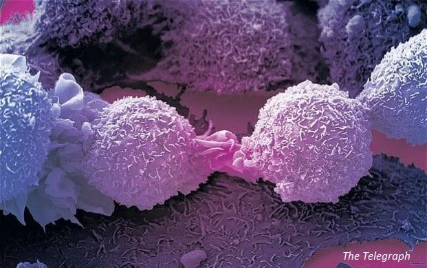 Случайно откритие се оказа революционен пробив в борбата с рака