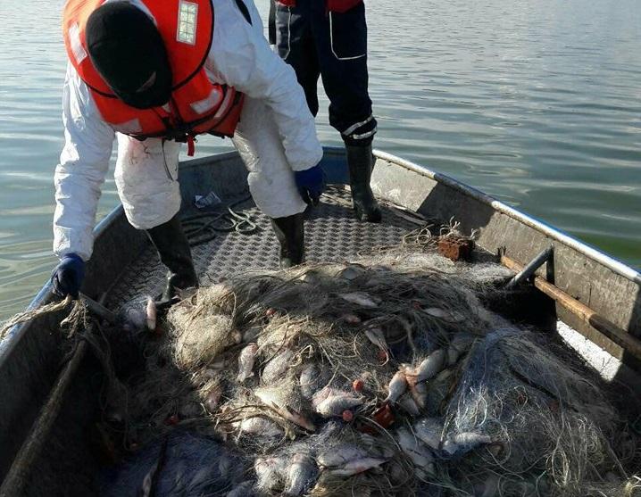 Близо 300 кг незаконно уловена риба задържаха в Бургас