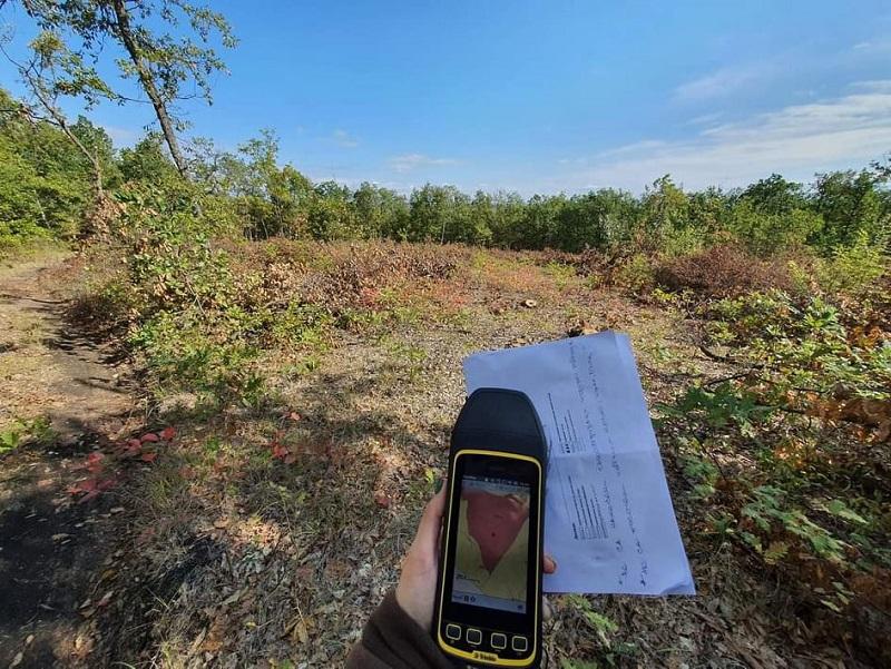 Проверка на РДГ-Бургас спря сечта в частни гори в землището на с. Сърнево