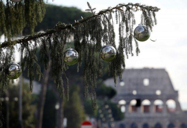 Елхата в Рим изсъхна преди Коледа