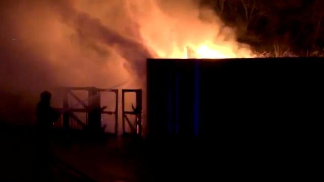 Огнен ад в лондонски зоопарк