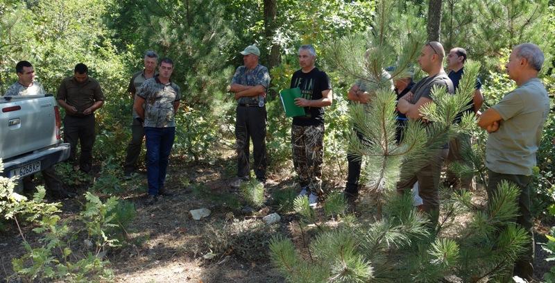Нова лесовъдска практика в горите на Странджа планина