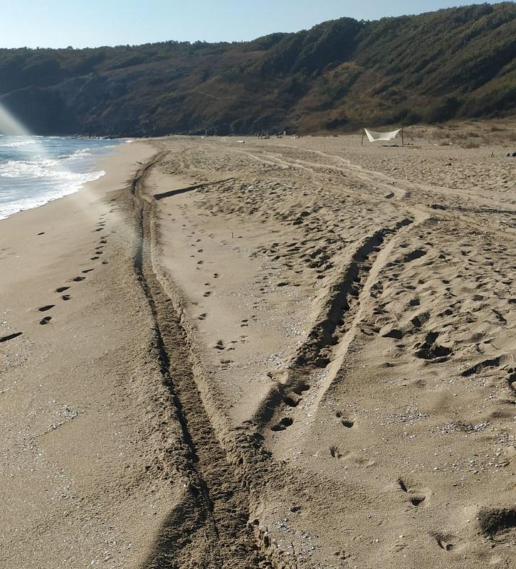 Мотористите на плаж Липите с нарушения по два закона, категоричен е шефът на РИОСВ