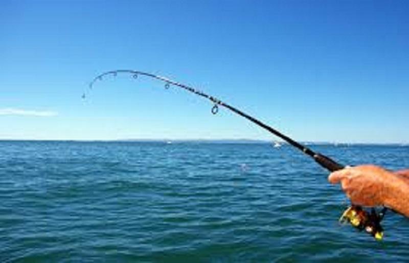 От днес започва любителският риболов в страната