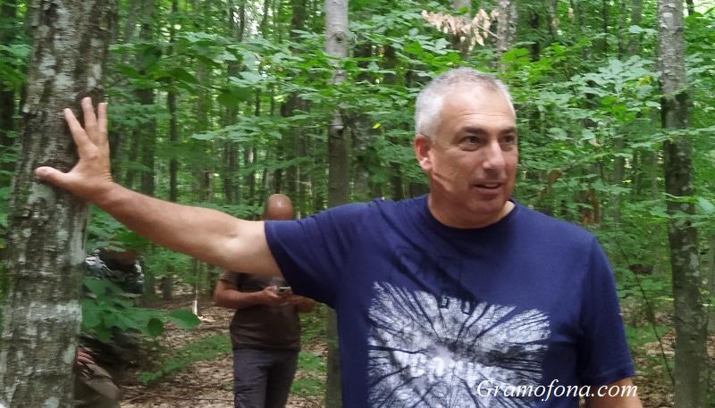 Немски метод за стопанисването на горите пази по-интензивно и биологичното разнообразие в тях