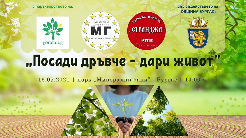 Тази неделя засаждат 20 дръвчета на Минералните бани