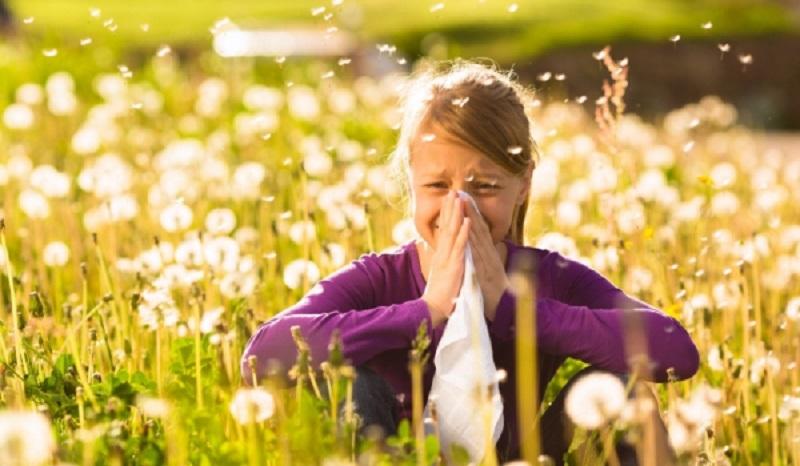 Безплатни изследвания за алергия в Бургас