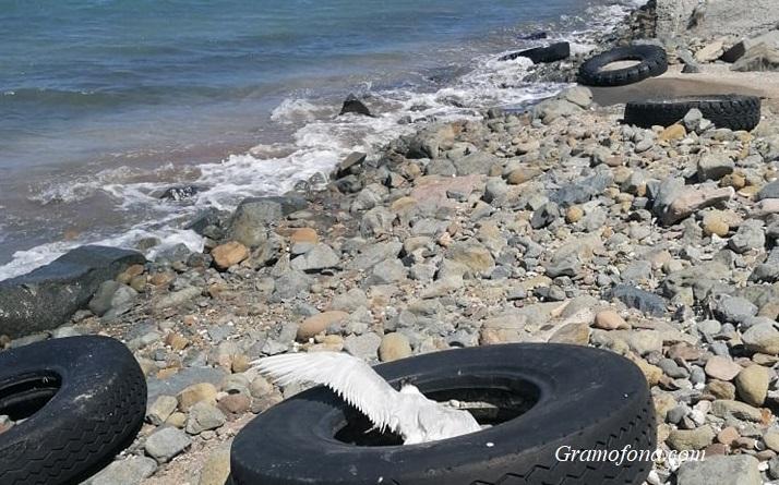 Автомобилни гуми по плажа и боклуци на пътя. Отманли се превърна в кочина