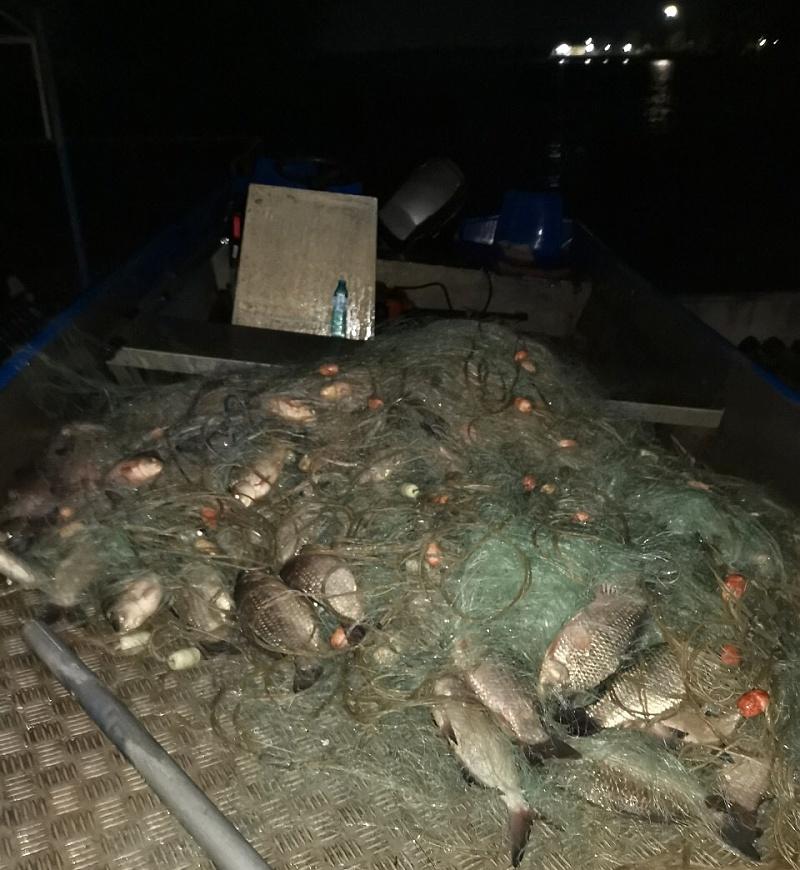 Иззеха 8 километра бракониерски мрежи с 1200 кила риба от язовир Мандра