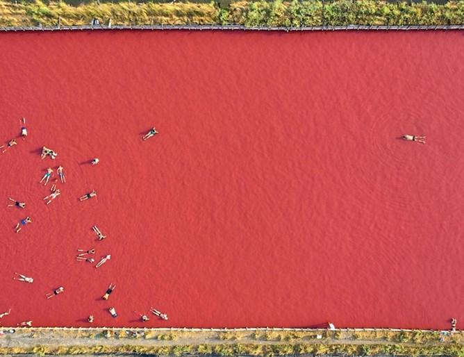 Снимка на бургаската луга донесе световно отличие на роден фотограф