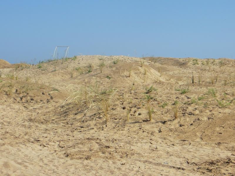 МОСВ актуализира площта на дюните между Златна рибка и Градина