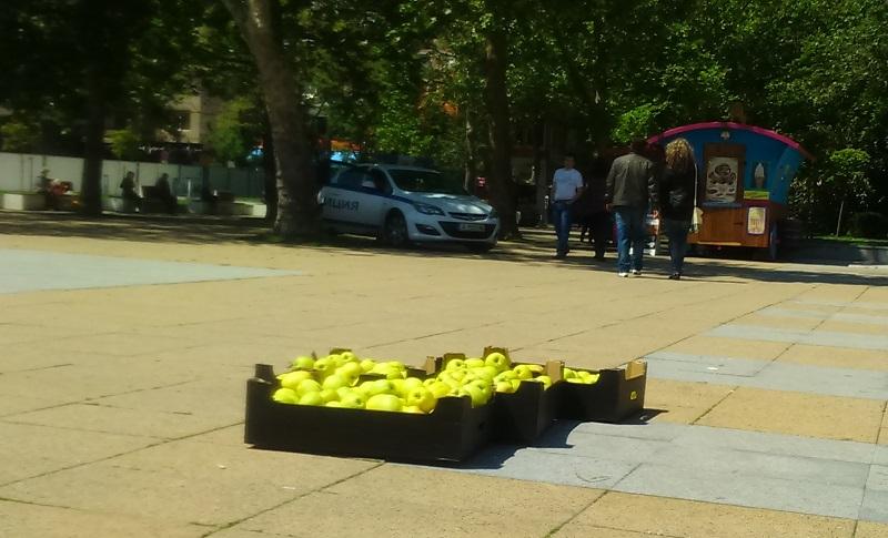 Протест на юристка: Свежи ябълки срещу гнила съдебна практика