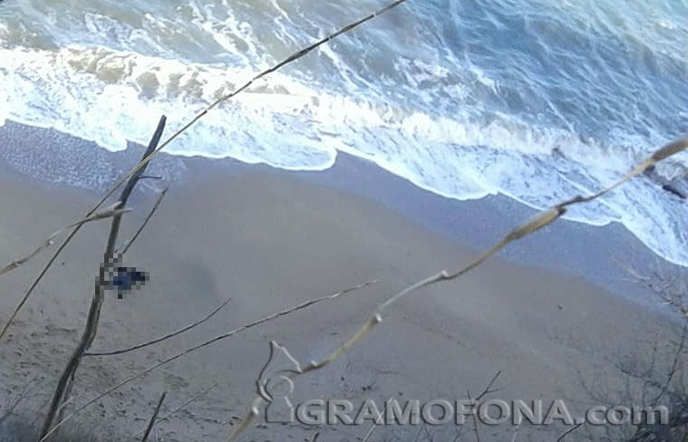 Момче и момиче с куче открили тялото на загиналата край Отманли