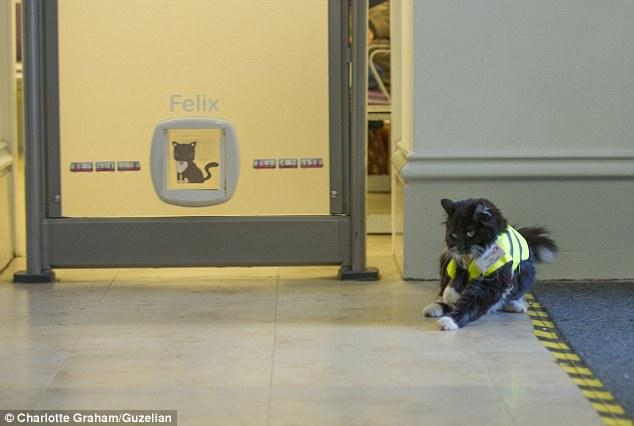 Феликс – старши контрольор в английска метростанция