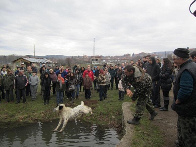 Протест срещу тричането на кучета в Бродилово