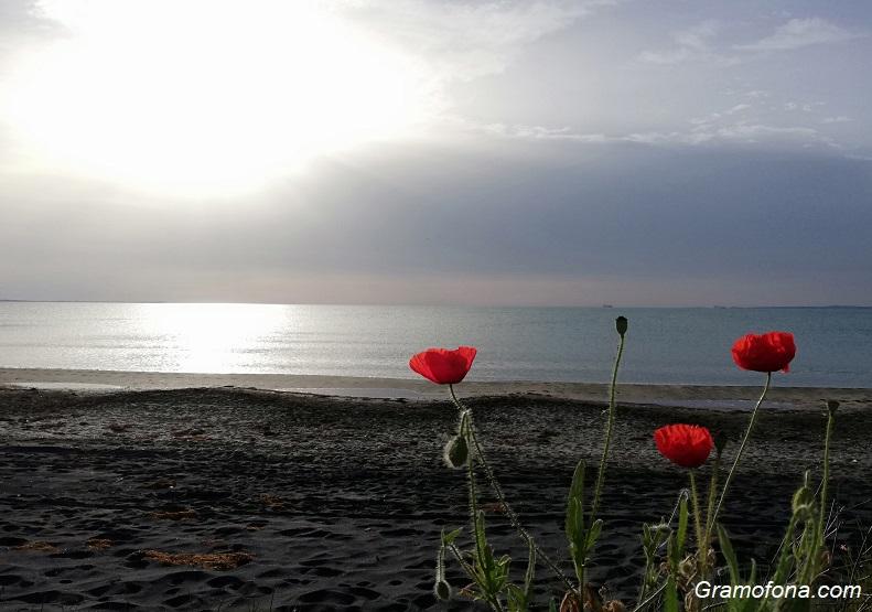 Жълт код за дъжд и гръмотевици в половин България