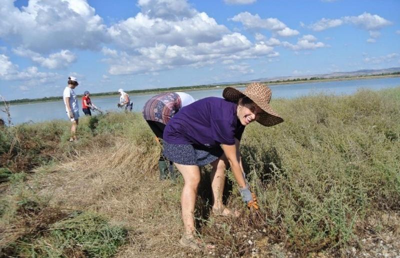 Природозащитници провеждат бригада на Поморийското езеро