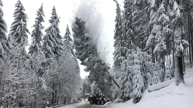 Отменени полети в Германия заради снега