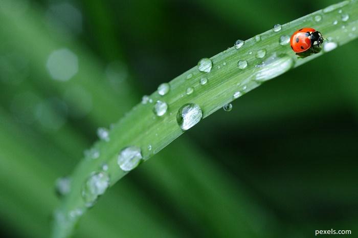 Новата седмица започва с дъжд и гръмотевици