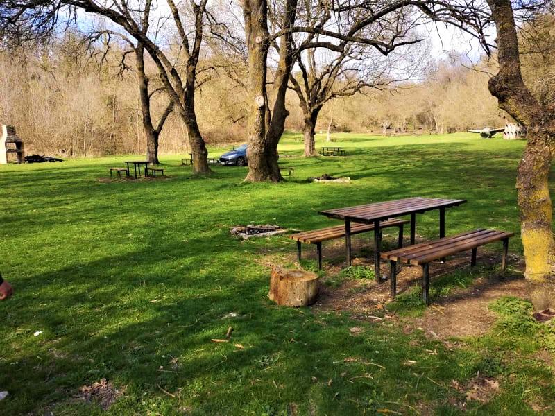 Да почистим любимия парк Отманли