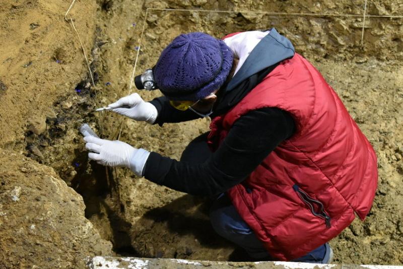 Първите Homo sapiens в Европа са открити в България