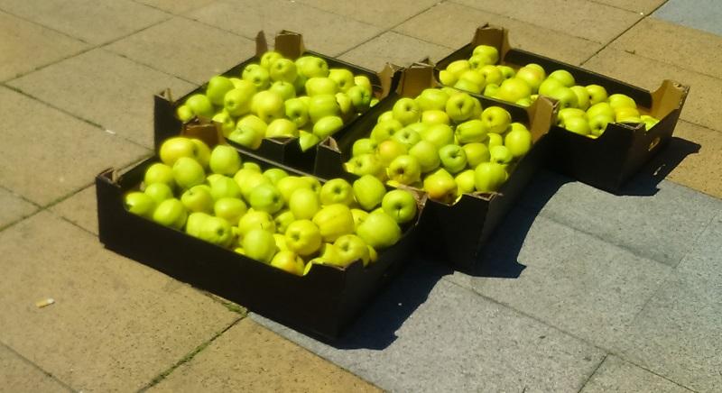 Окръжният съд коментира ябълковия протест на Емилия Фотева