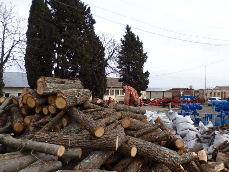 Горски и Икономическа полиция проверяват складове за дървесина