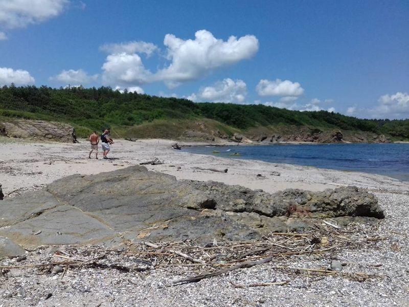 Булдозер нагази парка Странджа, изкопан е път до плаж в резерват