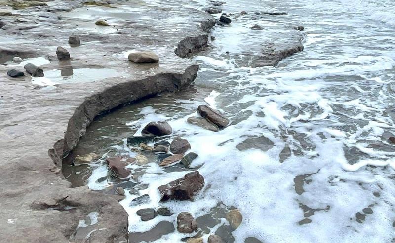 Що е то щета по плажа и как се възстановява? Концесионери искат ясни правила