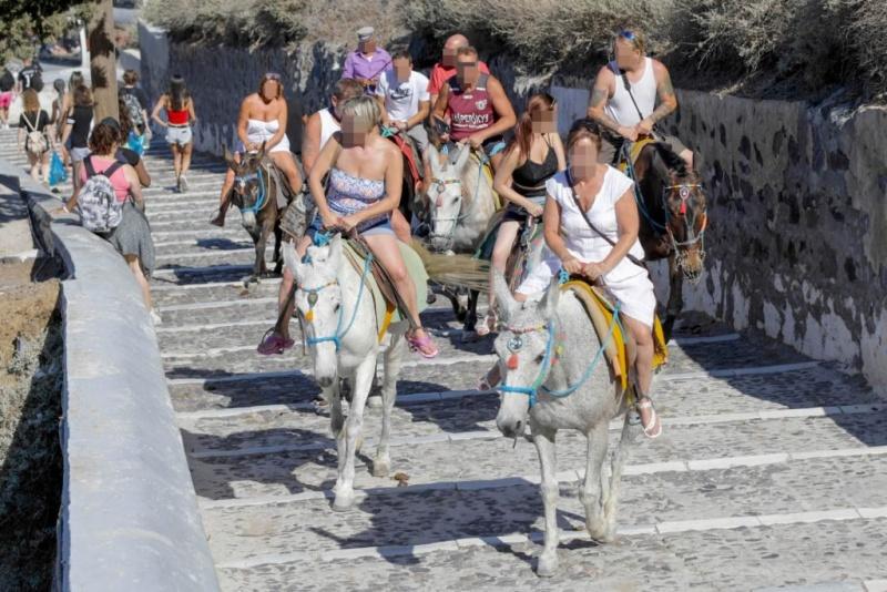 Забраниха на дебелите туристи да яздят магарета на Санторини