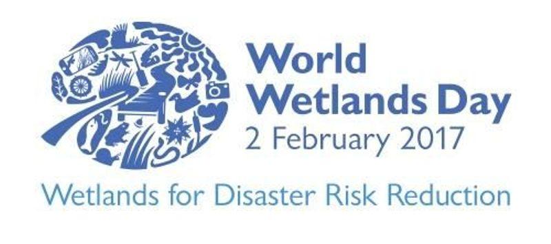 2 февруари e Световният ден на влажните зони