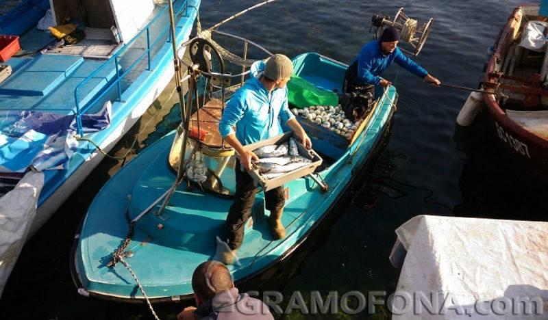 Солени глоби за българските риболовци в Гърция