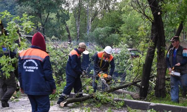 Жертвите на урагана в Москва растат
