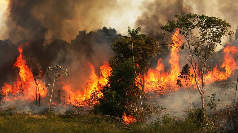 Над 80 горски пожара бушуват в САЩ