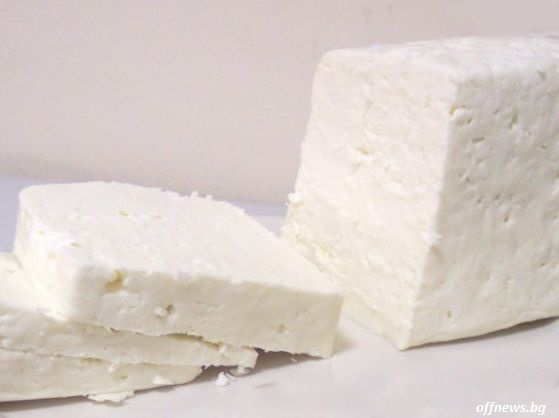 Откриха близо половин тон фалшиво сирене в мандра в Поморийско