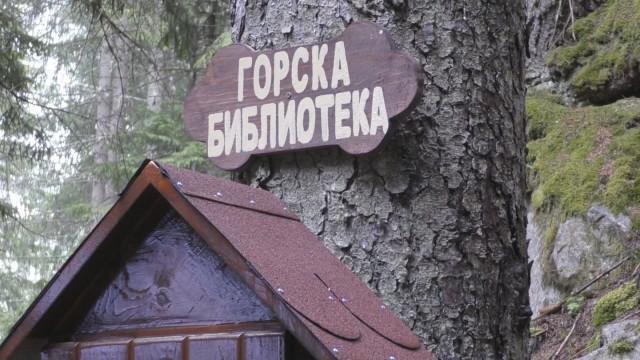 В Родопите вече има горска библиотека