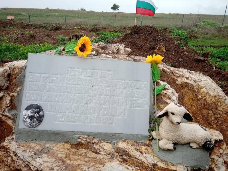 В Шарково направиха паметник на избитите преди 9 месеца животни