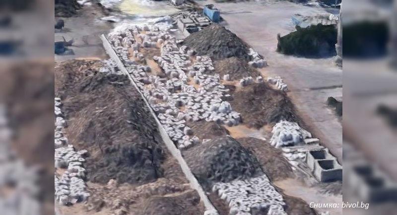 Извънредно: Прокуратурата подхвана 20 контейнера с италиански боклук на БМФ-Порт Бургас