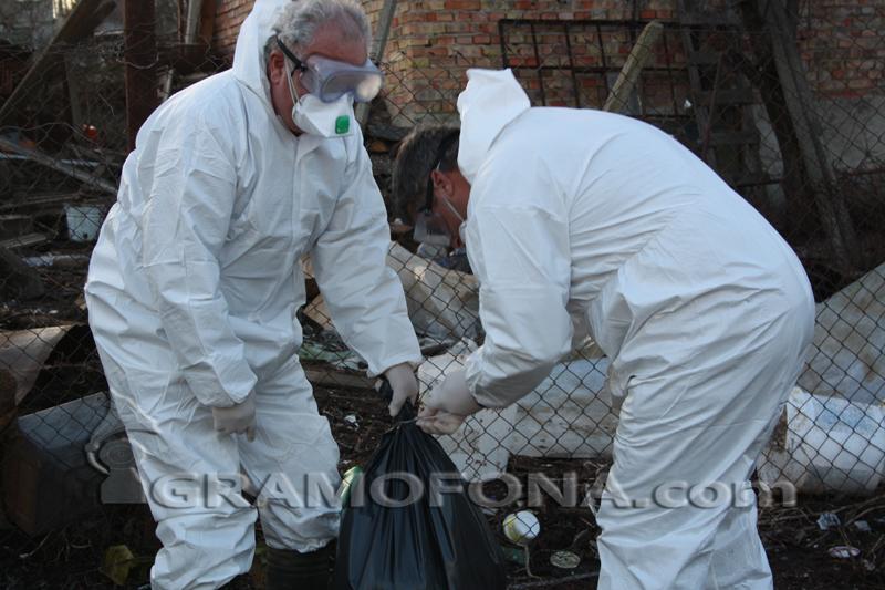 Огнищата на птичи грип в Бургаско вече са четири
