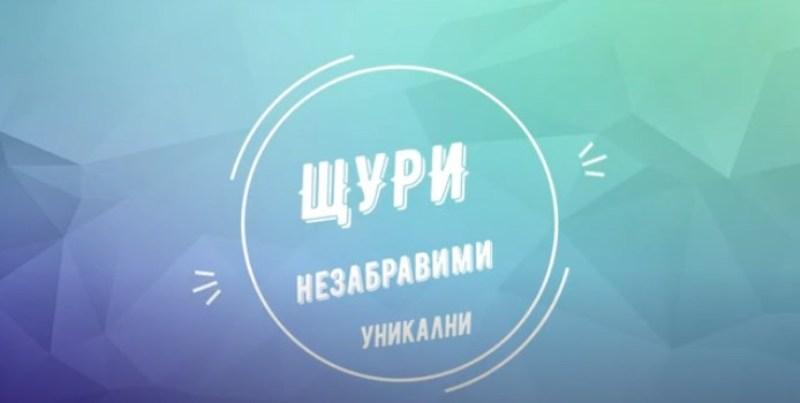 Виртуално изпращане на абитуриентите от Спортното училище в Бургас