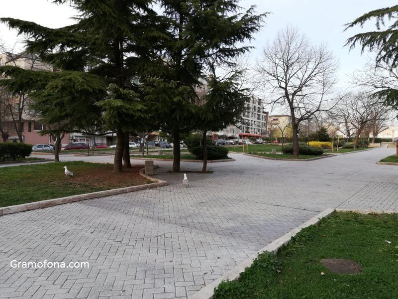 Борисовата градина в Бургас остана без пейки