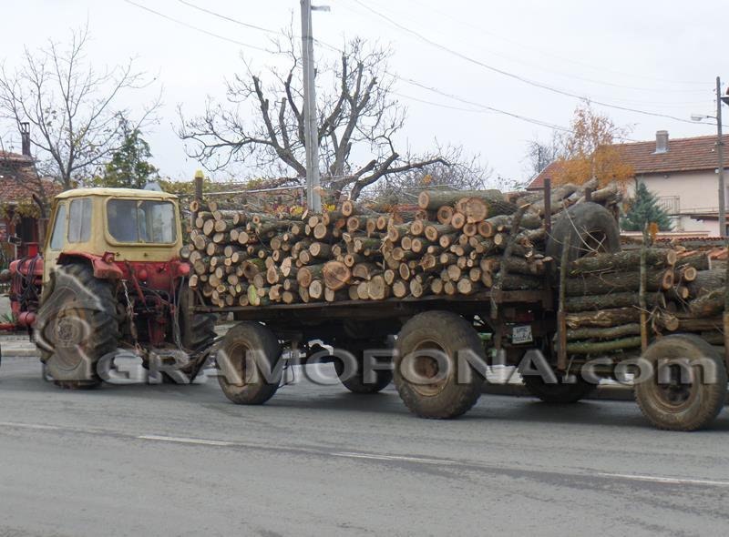 Задържаха 14 каруци с незаконна дървесина в Сунгурларе