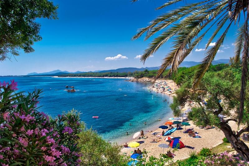 Скакалци нападнаха остров Сардиния