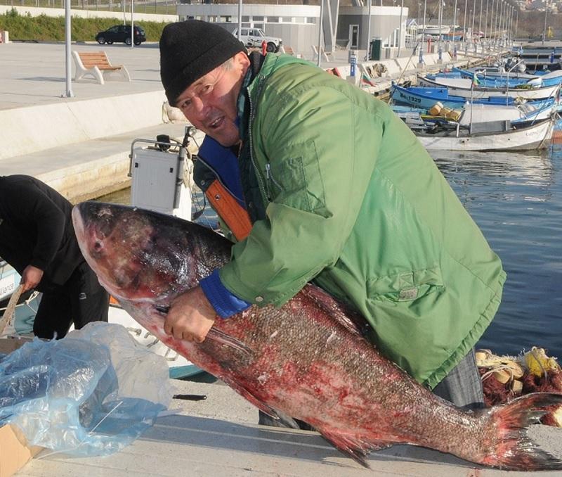 Идва време за рибарски лакърдии