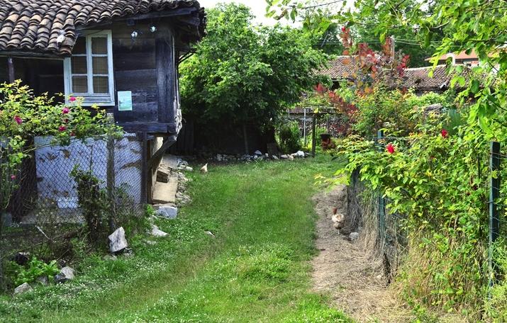 Без шумни компании в къщите за гости в Бръшлян