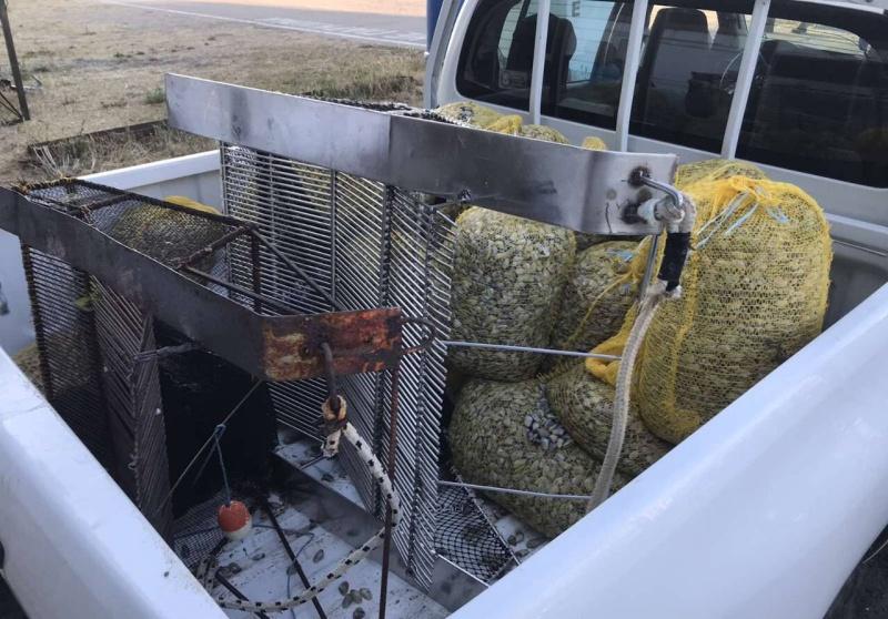 Край Приморско хванаха нарушители с драги за улов на бяла мида