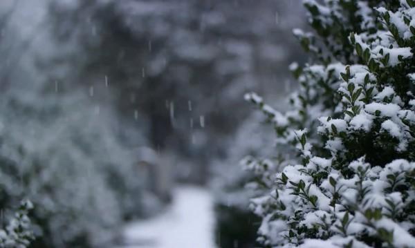 Студ и сняг сковаха Гърция