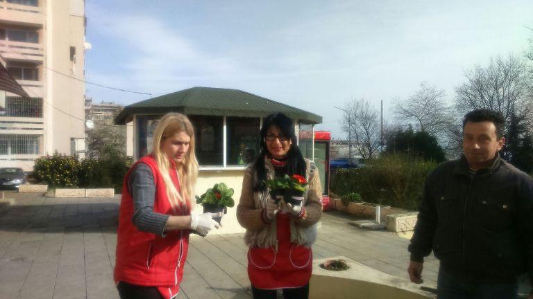 Предприемачите на ГЕРБ-Бургас подариха 1000 цветя в саксии на дами от града