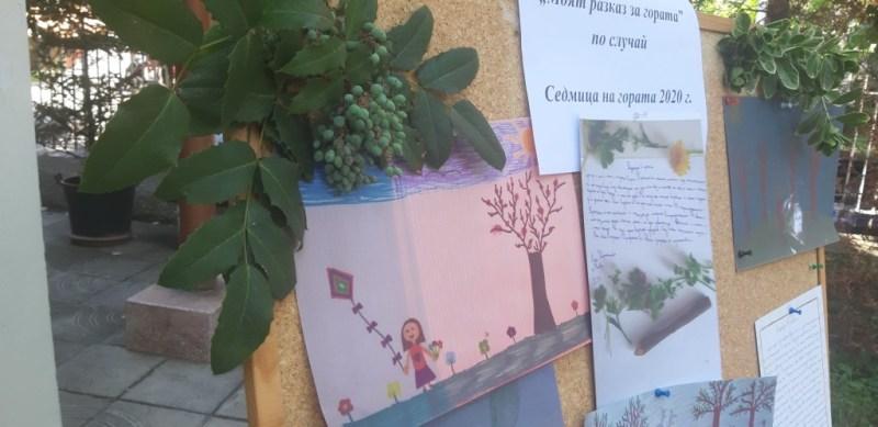 """Отличия за участие в """"Моят разказ за гората"""""""