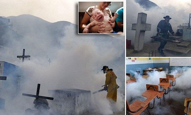 В Южна Америка дезинфекцират гробища и училища в отчаян опит да спрат вируса Зика